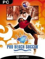 职业沙滩足球