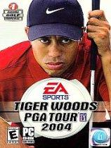泰格伍兹世界巡回赛2004