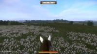 《天国拯救》新版贵族剑及刺剑获得方法