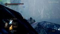 《黑暗之魂1重置版》结晶洞穴刷月光蝶方法视频