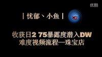 【忧郁小鱼】收获日2 75暴露度潜入DW难度珠宝店