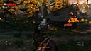巫师3:狂猎 马战