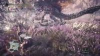《怪物猎人世界》全武器灭尽龙速杀合集 - 10.盾斧