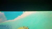 《口袋妖怪:究极日月》巨翅飞鱼冲浪100000分视频