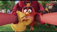 《愤怒的小鸟》强力出击!全新预告片大首播!