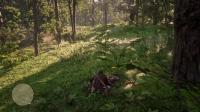 《荒野大镖客2》制作东部传说背包狩猎动物攻略6.04-2鹿