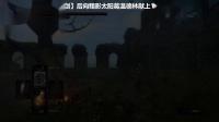 《黑暗之魂重制版》全奇迹收集01.暗月光之剑