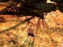 【游侠网】《黑暗之魂2》亚尔特留斯攻击动作