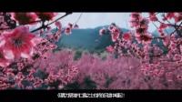 《全面战争:三国》官方繁中字幕预告