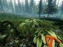 森林 0.07版上手解说视频