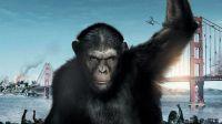 《猩球崛起3:终极之战》人猿大战一触即发