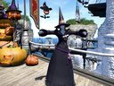 Eorzea_Collection_2014AW