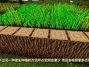 我的世界新手向玩家视频攻略03:种植与烹饪