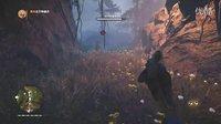 【混沌王】《孤岛惊魂:原始杀戮》PC版专家难度最高画质实况解说(第二十期 驯服血牙剑齿虎)