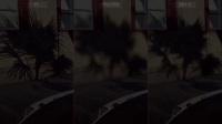 《极品飞车20:复仇》PCvsPS4 ProvsXB1X画面特效对比视频
