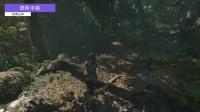 《古墓丽影:暗影》秘鲁丛林全地图收集攻略视频 1.遗物-手帕
