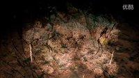 《孤岛惊魂:原始杀戮》主线详细流程 实况解说攻略 第六期:荒野追踪