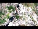 大战野兽谷-真人版孤岛惊魂