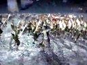 【游视频站】《真三国无双7:猛将传》PS4完全版预告片