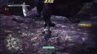 《怪物猎人世界》轻弩单刷极贝希摩斯视频