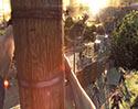 《消逝的光芒》游戏评测