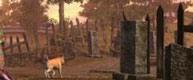 《侍道4》全技能解锁中文一览