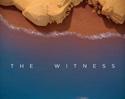 《目击者》游戏评测