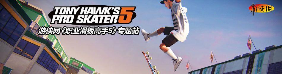 职业滑板高手5