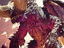 《怪物獵人世界》PC和PS4 Pro對比