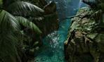 《丛林地狱》公布游戏预告