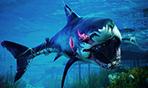 《食人鲨》开场13分钟演