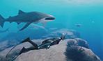 《深海超越》新演示