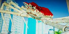水族馆新作《螃蟹大战》专题站上线 与其他物种大战!