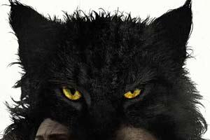 斯蒂芬金《宠物坟场》惊吓回归,结局恐怖又暗黑