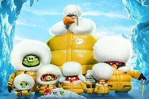 《愤怒的小鸟》十周年纪念视频 还记得那只