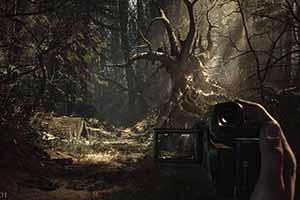 《布莱尔女巫》IGN 8.8分 恐怖游戏殿堂应该有它名字