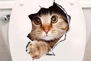 """想上厕所却被猫吓一跳!超可爱脑洞贴纸""""猫咪侵略"""""""