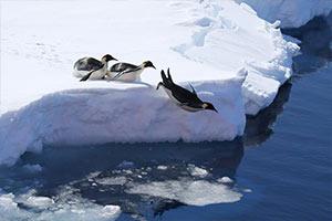 地球大陸最深點發現在南極 可達海平面以下3500米