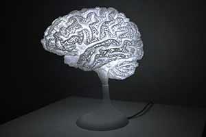 夜晚點亮好驚悚!網友把自己大腦3D打印出來做成臺燈
