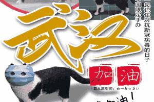 口罩貓手辦中國地區所有收益全部捐贈:武漢加油!