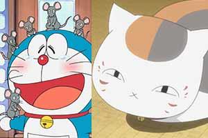 动漫里也要吸猫!日网评选动漫中最爱猫咪角色top10