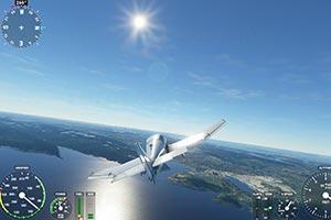 《微软飞行模拟》新截图 翱翔天际除了美景还有大雁!