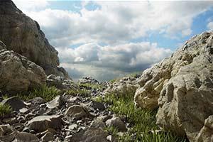 细节拉满!《地平线4》开发商为XSX做图像技术演示