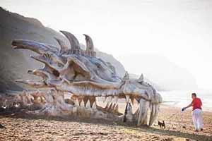 沙滩惊现龙的巨型头骨!绝无PS的神奇照片让人大开眼界