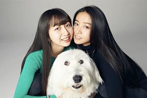 一家子都是高颜值!日本演艺圈最美姐妹花TOP10