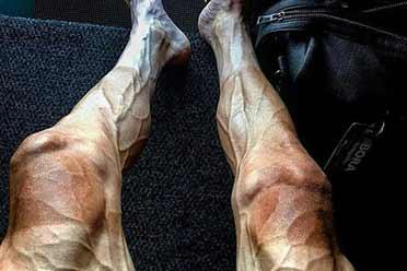 骑完环法双腿青筋惊悚炸裂!17张罕见的涨知识照片!