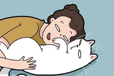 猫奴扎心日常过于真实!国外画师绘制养猫的25个日常