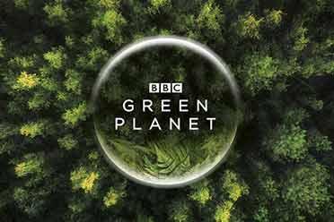 B站 & BBC出品自然历史类巨制:8K首制《绿色星球》!