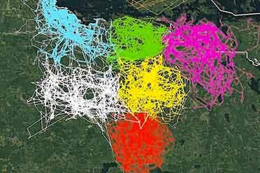 法国和巴西领土竟然接壤!你没见过的30张冷知识地图