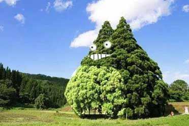 """三次元的龙猫!日本山形县的""""龙猫树""""让人直呼可爱"""